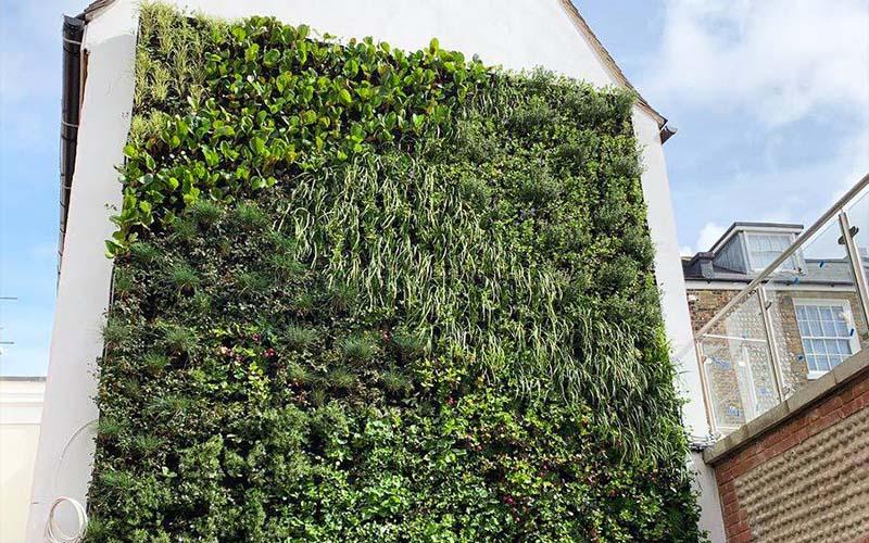 living-wall-flint-house-brighton
