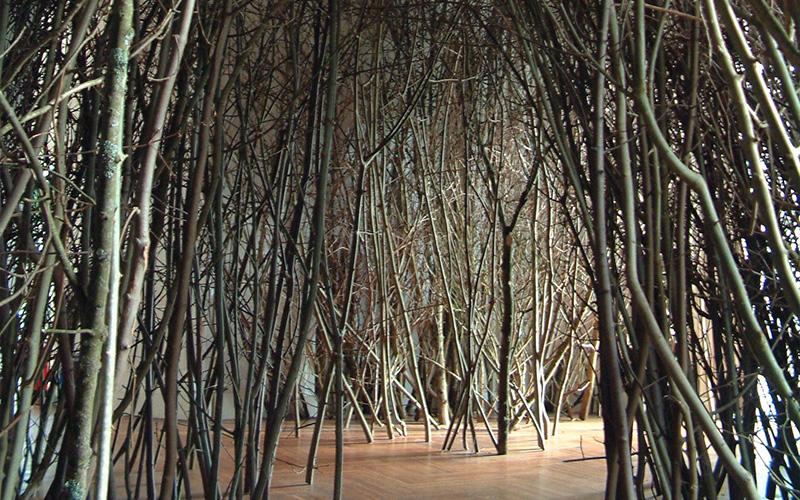 forest-path-brighton-festival